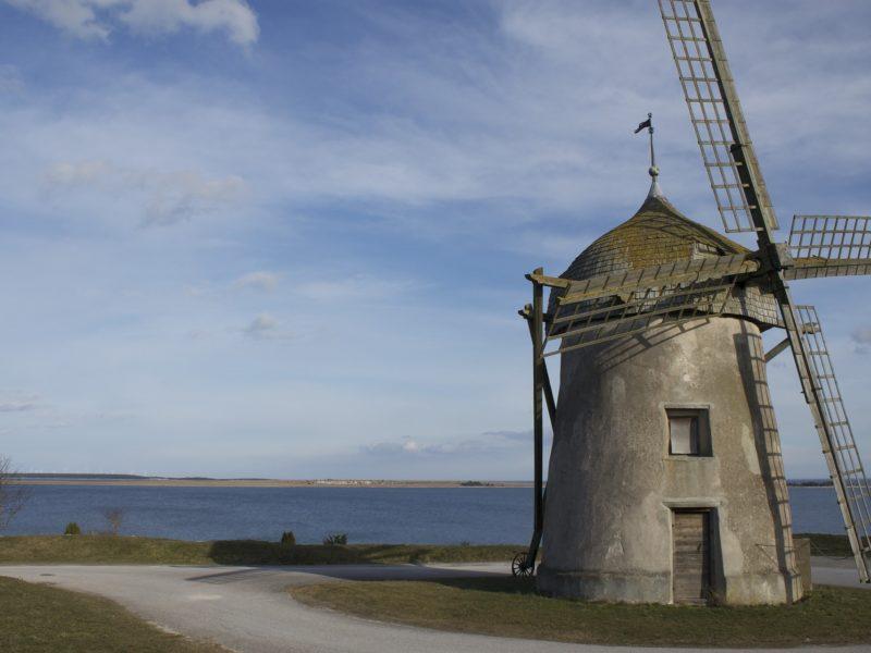 Gotland kusten
