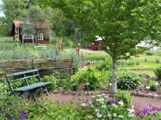 Fobo trädgård