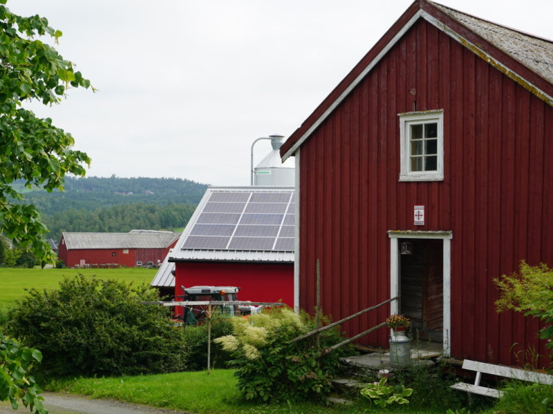 Munkeby St Olavsleden2