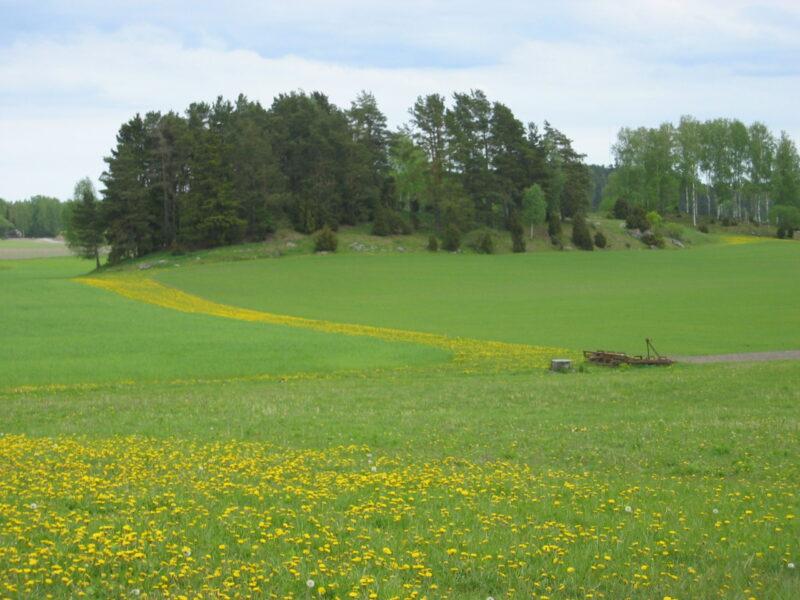 Brunnsta Gård - Trollbacken