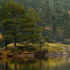 Cykla i Tivedens nationalpark