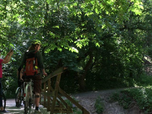 Cykla längs Lärjeåns dalgång