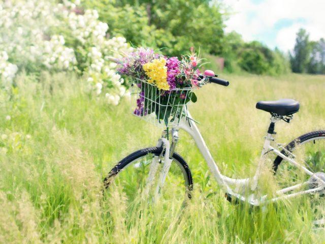Cykelturistveckan Kristianstad
