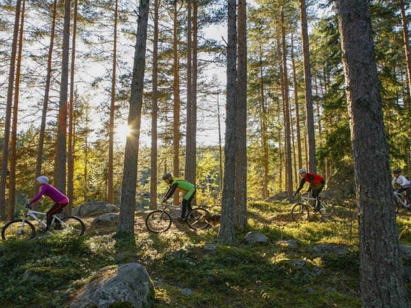 Crosscountry Järvsö2