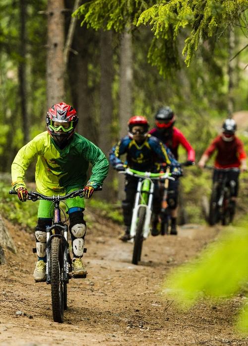 Cycle in Järvsö