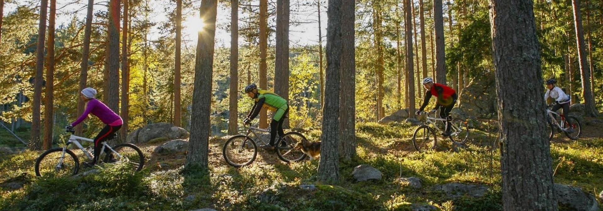 cykla crosscountry i järvsö