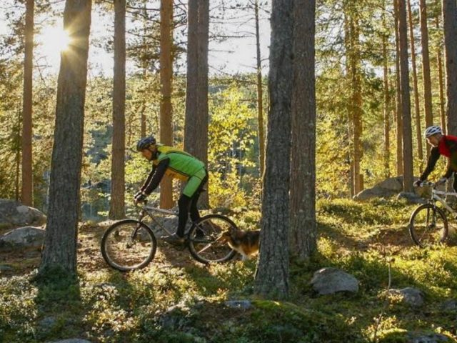 cycling crosscountry in Järvsö