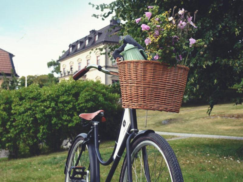 Gjörvälns slott cykel