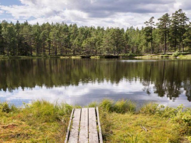 hökensås nordic camping2