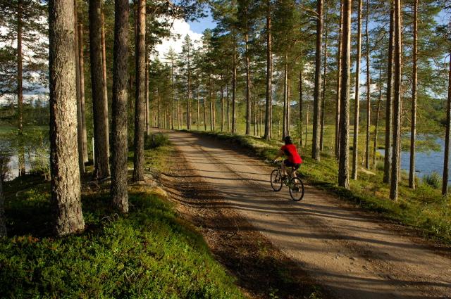 Långbergets sporthotell_cyklelsemester