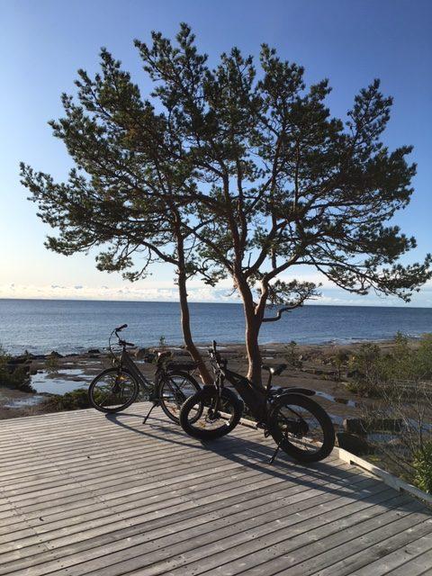 cykelbild Höga kusten