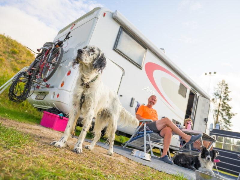 camping_skelleftea_husvagn_0004