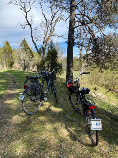 Cykelpaket Runnvikens pensionat och Marinans Guesthouse