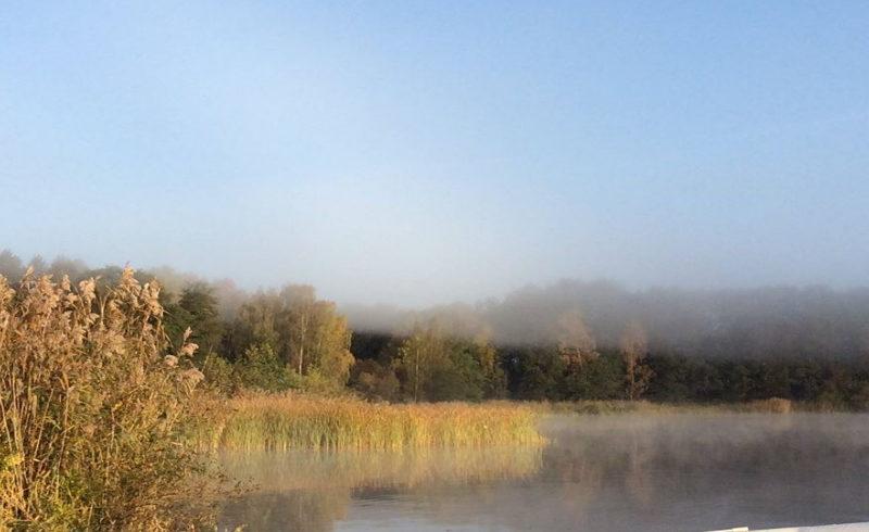Kungsörstorp overlooks Lake Mälaren