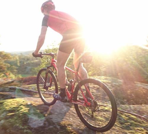 MTB cykla i skogen