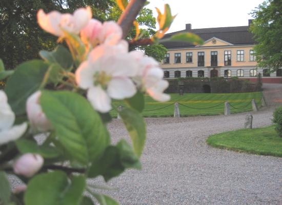 Runnvikens guest house