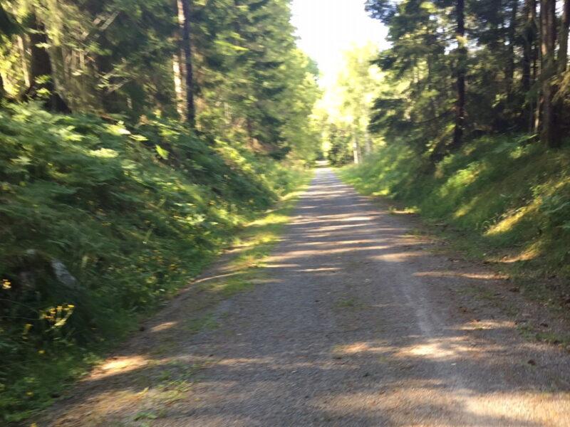 Vägen mot Gisslarbo