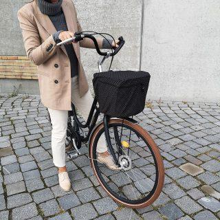 Luna Rain Cover Bike Basket Front Dot 3