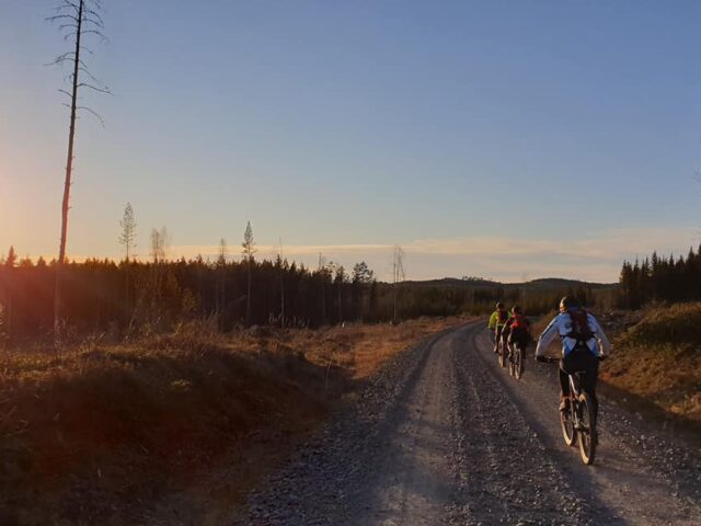 MTB the lodge torsby