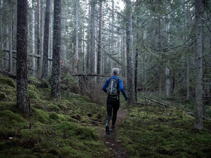 Stensund beautiful run in the forest
