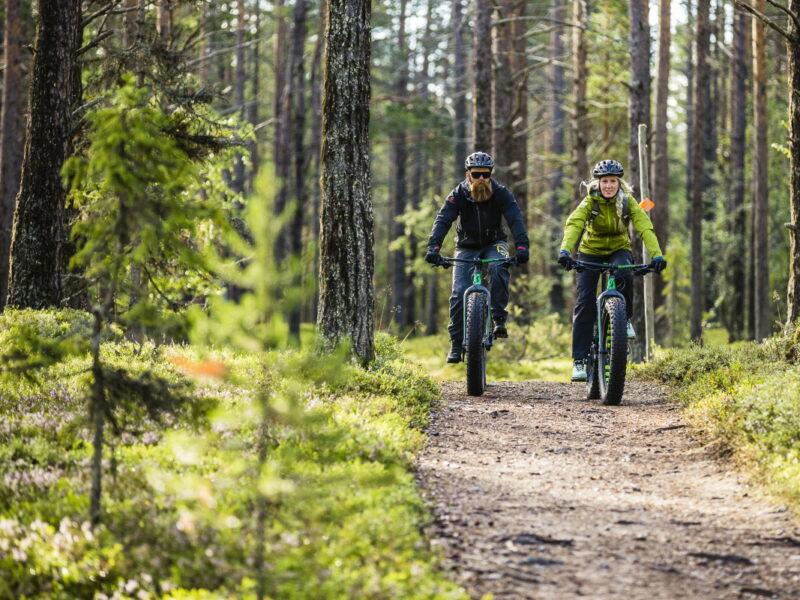 Cycling in Lofsdalen2