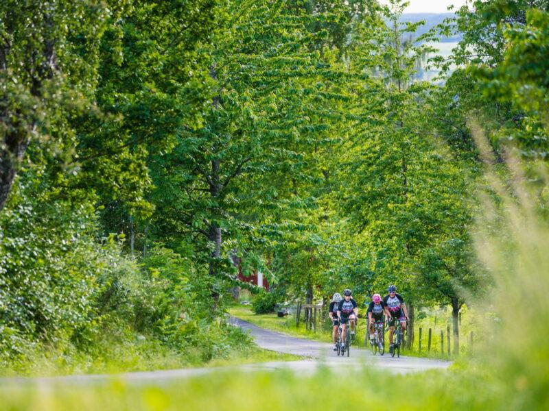 Cykla med Glenn Magnusson_foto Jesper Anhede_2