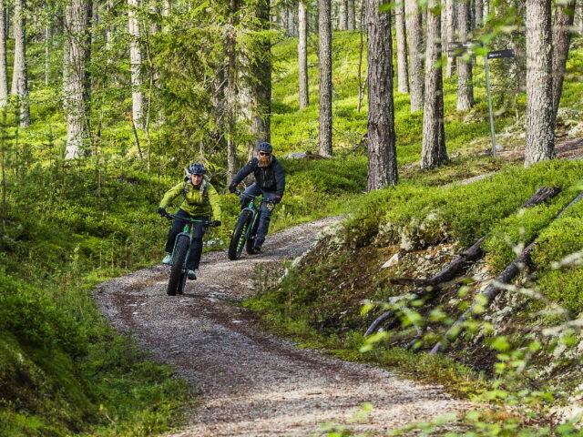 Lofsdalen cykling_header
