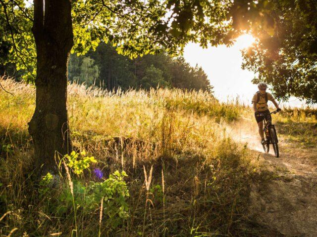 Västerås mountainbike