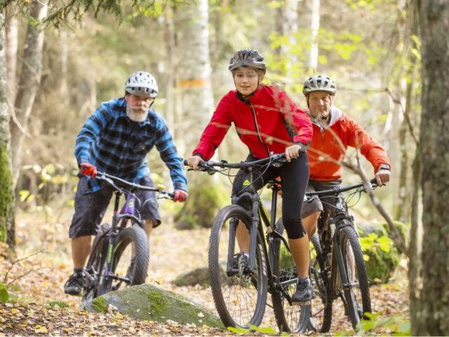 cykla mtb på björnön trails of västmanland2
