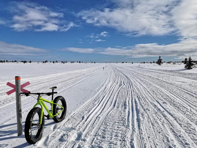 Cykla fatbike på snö i Dorotea_2