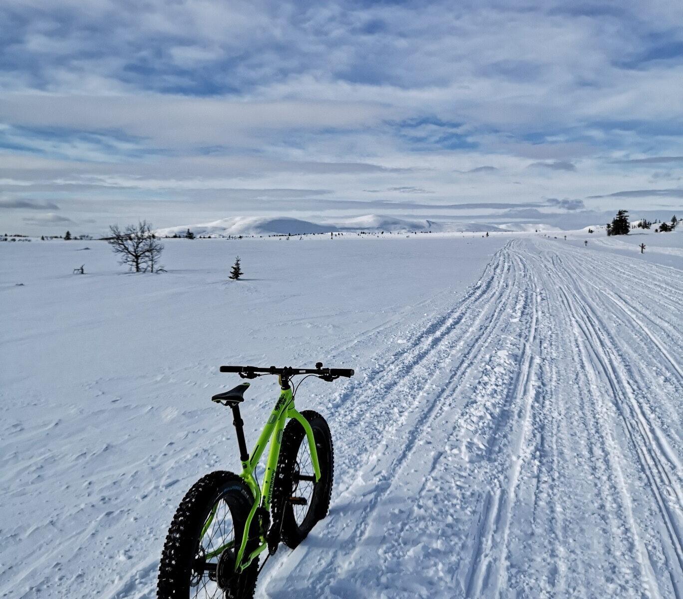 Cycling on Gitsfjället