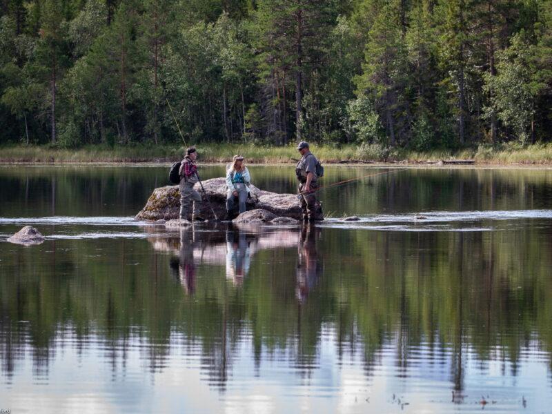 Gimån-fiske
