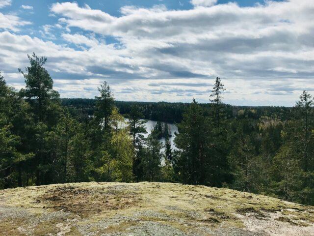 Cykla MTB i skogarna i Kolmården