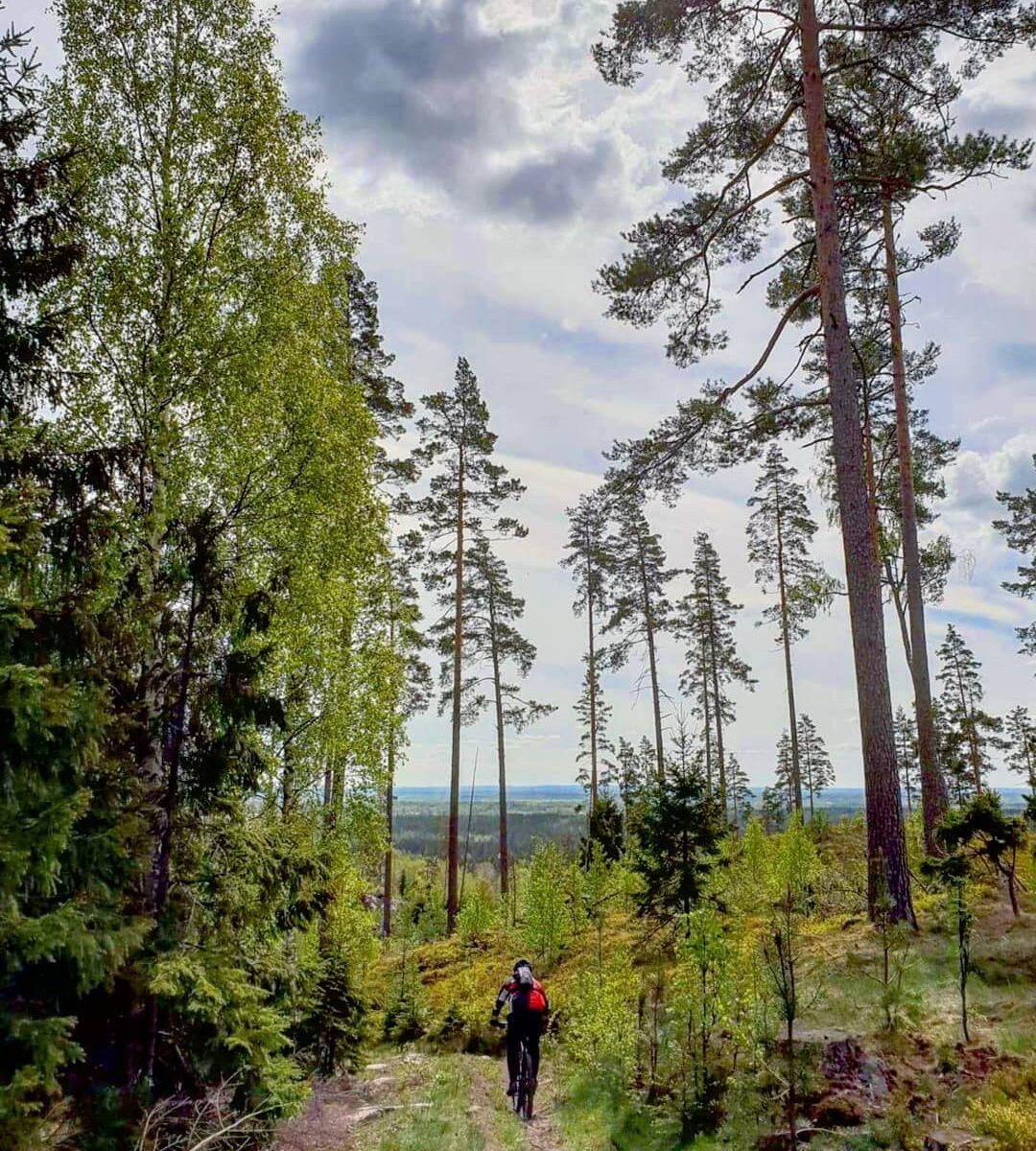 cycle mtb in the mountains and stay at the new cabin's spa