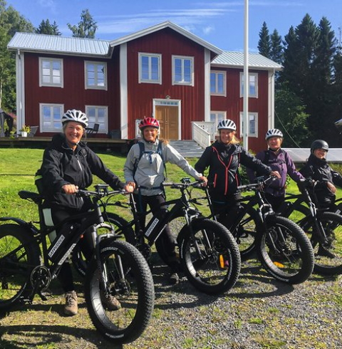 Stable, high-quality electric bicycles