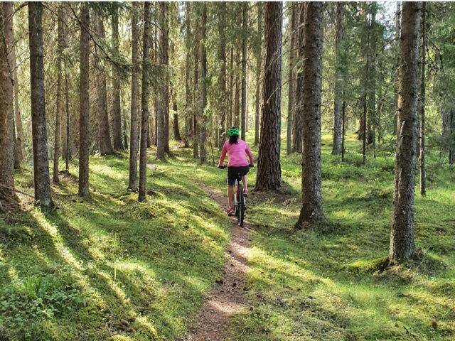 biking-gastrikland-mtb-header