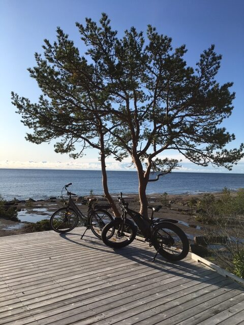 med elcykel i höga kusten