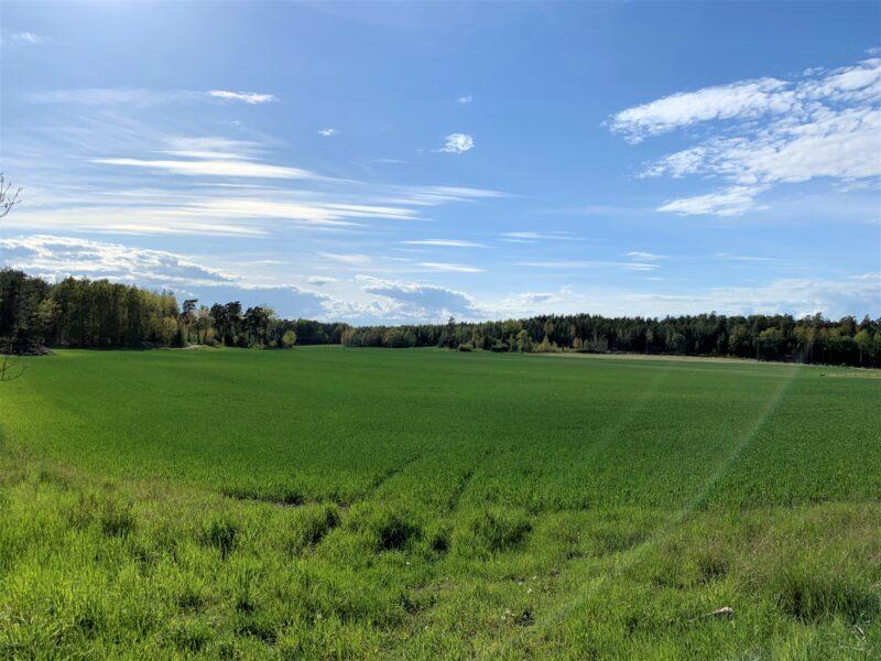 böljande fält ekerö